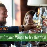 103 Best Organic Wines to Try this Year