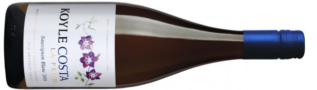 Biodynamic wines from Chile