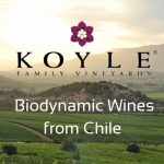 New Biodynamic Wines from Chile